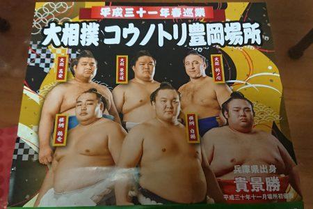 大相撲コウノトリ豊岡場所
